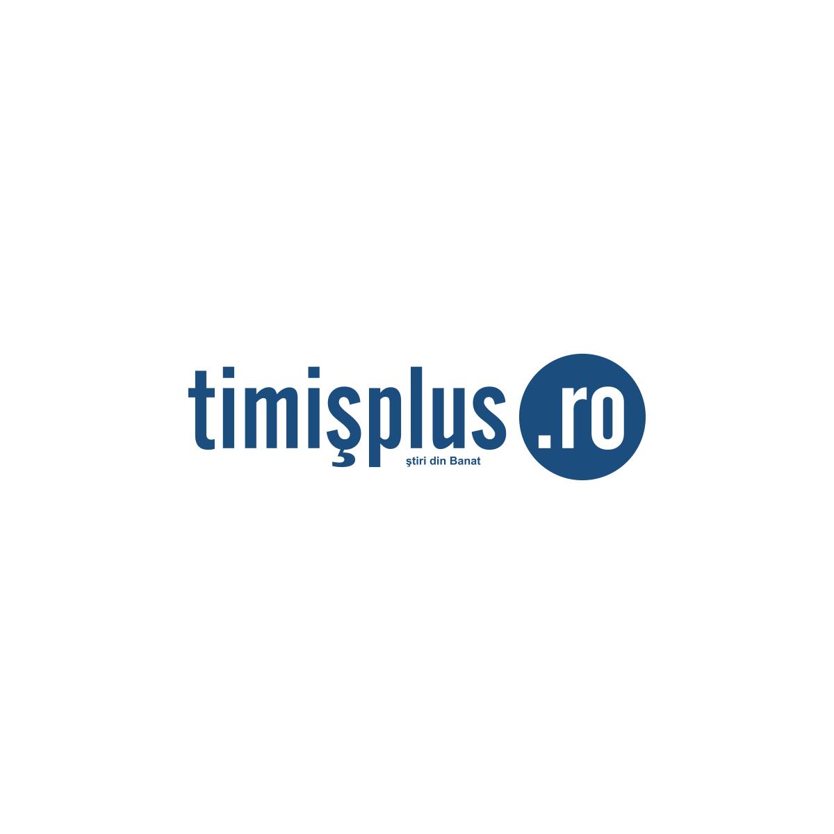 timis plus logo